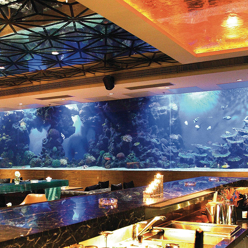 Hotel Acrylic Square Aquarium Fish Tank