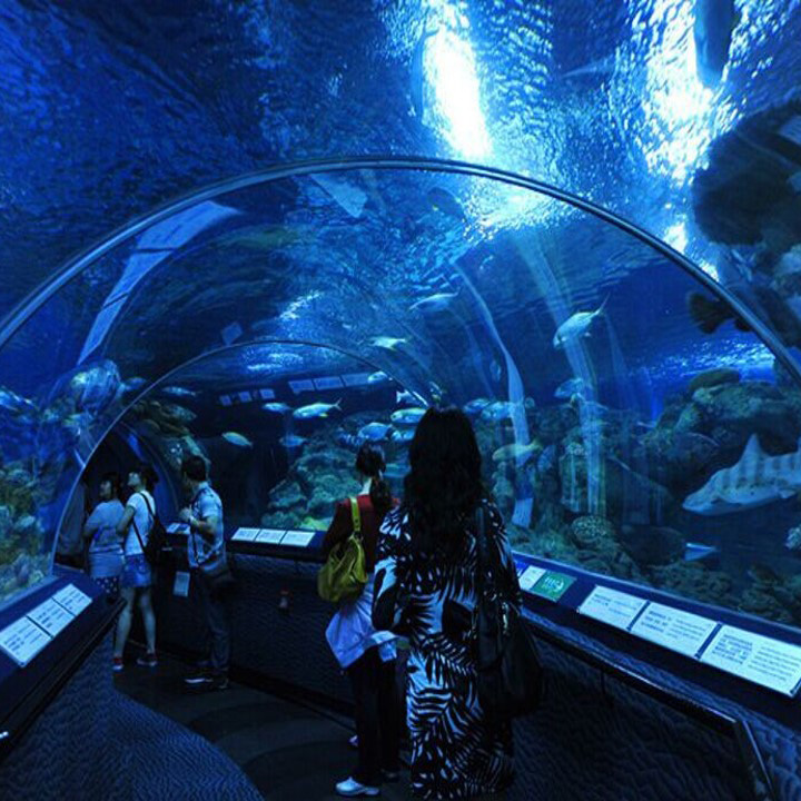 Oceanarium Serpentine Acrylic Tunnel Aquarium