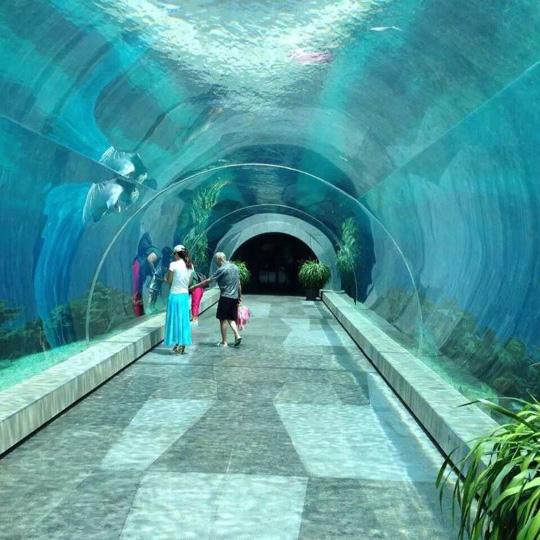 Paradise Oceanarium Acrylic Tunnel Aquarium